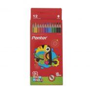 مداد رنگی 12 رنگ جلد مقوایی پمنر
